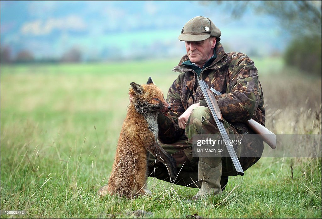 Terrier man John Cook poses with a dead fox which has been shot during a fox hunt with The Duke of Buccleugh's Fox hounds on November 09, 2011 in St Boswells, Scotland.