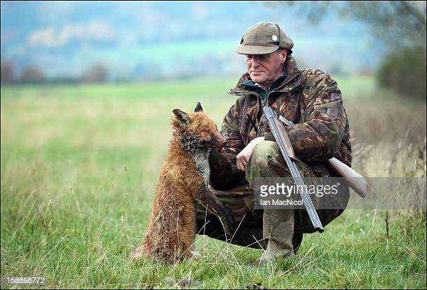 Terrier man John Cook poses with a dead fox which has been shot during a fox hunt with The Duke of Buccleugh's Fox hounds on November 09 2011 in St...