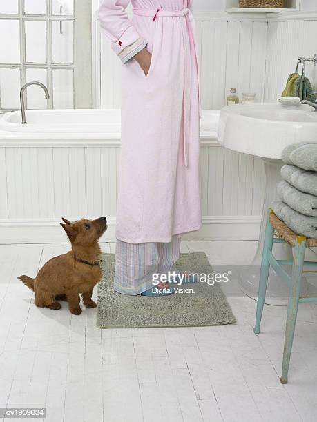 Terrier Sits in a Bathroom Waiting By a Woman's Feet as She Puts Her Hand in Her Dressing Gown Pocket