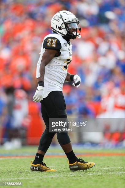 Terrill GilletteRodgers of the Towson Tigers looks on during the fourth quarter of a game against the Florida Gators at Ben Hill Griffin Stadium on...