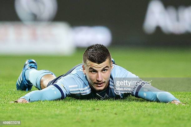 Terry Antonis of Sydney FC reacts after an opportunity during the round 10 ALeague match between Sydney FC and Perth Glory at Allianz Stadium on...