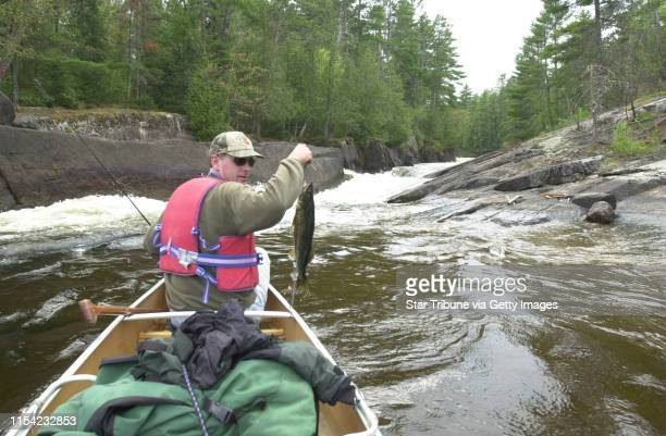 Terry Arnesen of Stillwater with a walleye caught in the fast waters of Rebecca Falls in Quetico Provincial Park Ontario fishing