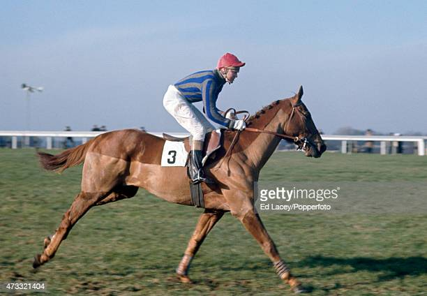 Terry Biddlecombe riding Oedipus Rex in action during the Park Handicap Chase at Sandown Park Racecourse in Esher Surrey on 6th February 1970