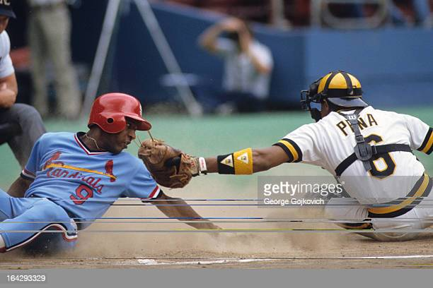Terry Pendleton of the St. Louis Cardinals tries to avoid the tag by catcher Tony Pena of the Pittsburgh Pirates as he slides home during a Major...