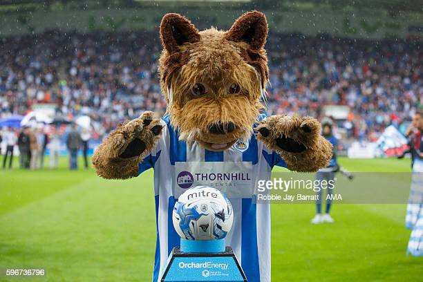Terry The Terrier mascot of Huddersfield Townduring the Sky Bet Championship match between Huddersfield Town and Wolverhampton Wanderers at John...