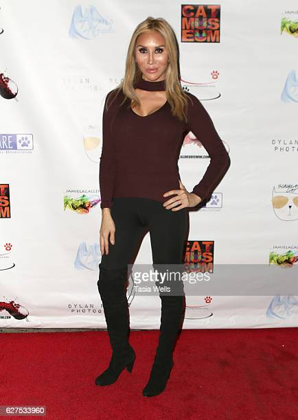 Tess Broussard attends PAWS FURR CAUSES Benefit for Lifelineforpets on December 3 2016 in Los Angeles California