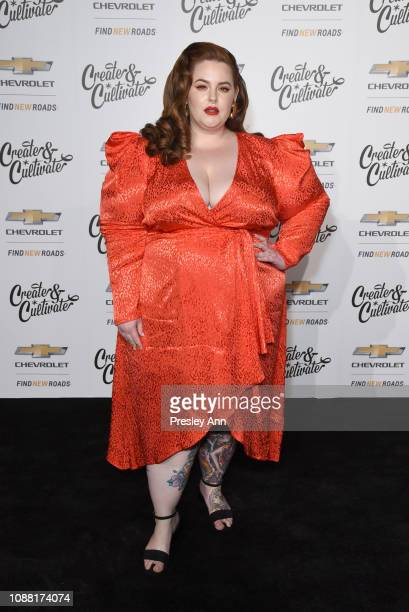 Tess Holliday attends the Create & Cultivate And Chevrolet Launch Event For The Create & Cultivate 100 List on January 24, 2019 in Los Angeles,...