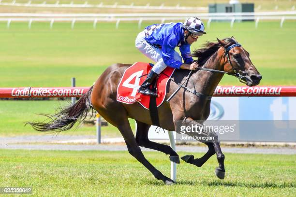 Tessabelle ridden by Damien Oliver wins the Nick Johnstone Real Estate Handicap at Ladbrokes Park Lakeside Racecourse on February 15 2017 in...