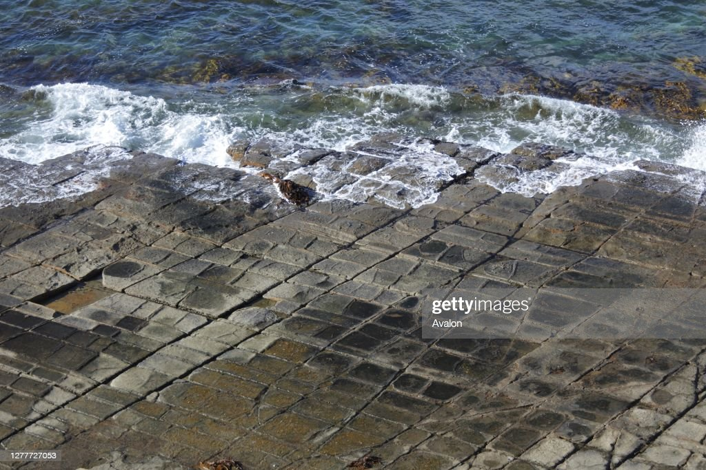 Tessellated Pavement in Tasman Peninsula Tasmania Australia. : News Photo