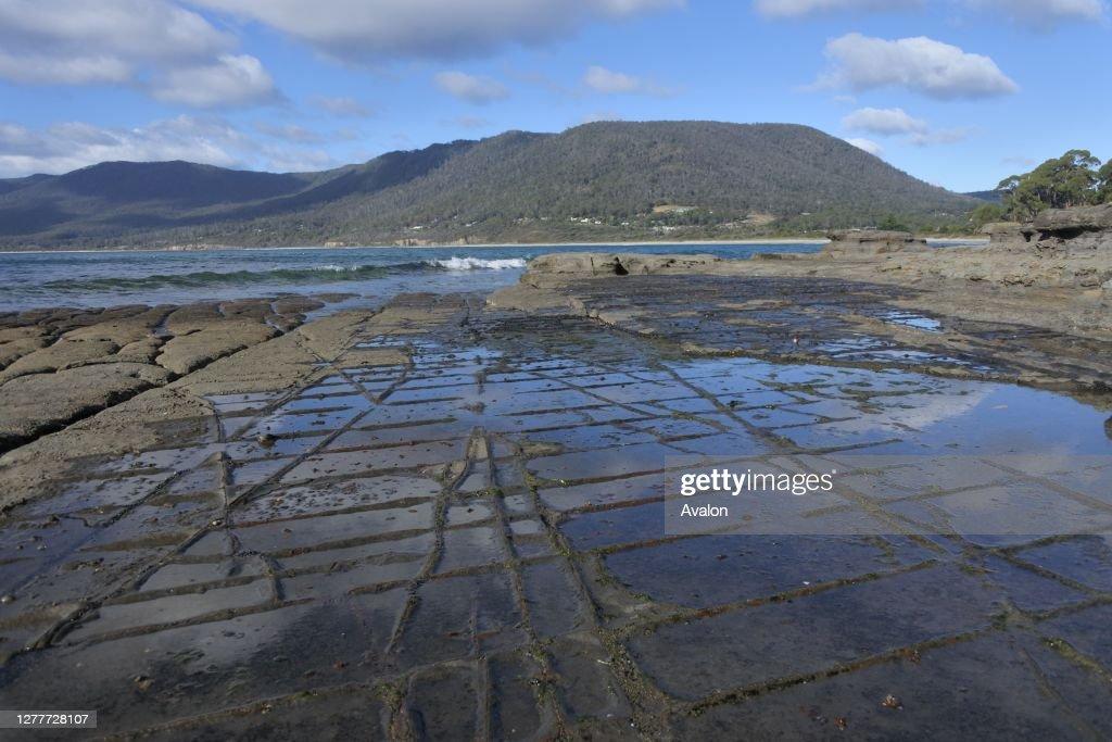 Tessellated Pavement in Tasman Peninsula Tasmania Australia. : News Photo