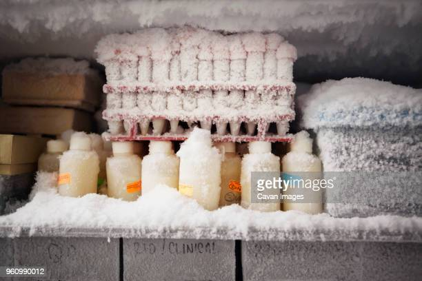test tubes in fridge - freezer stock photos and pictures