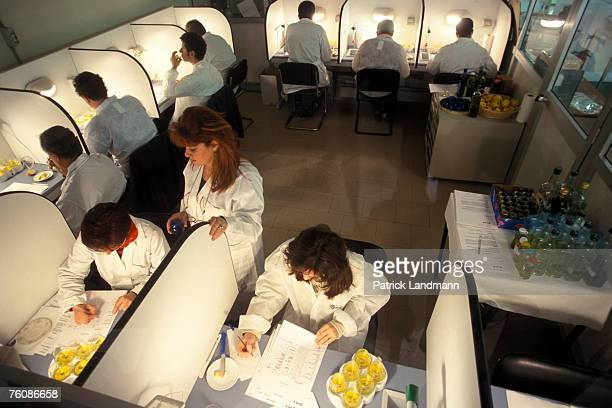 Testers examine the smell taste and touch of the oil to establish the various organoleptic characteristics and allocate a note to the oil on a sheet...
