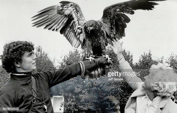 Testing his wings Mikisi Metro zoo's young injured bald eagle gave visiting seniors a thrill when he amiably sat on the tap of a wheelchair patient...