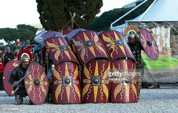 testudo - italia ストックフォトと画像