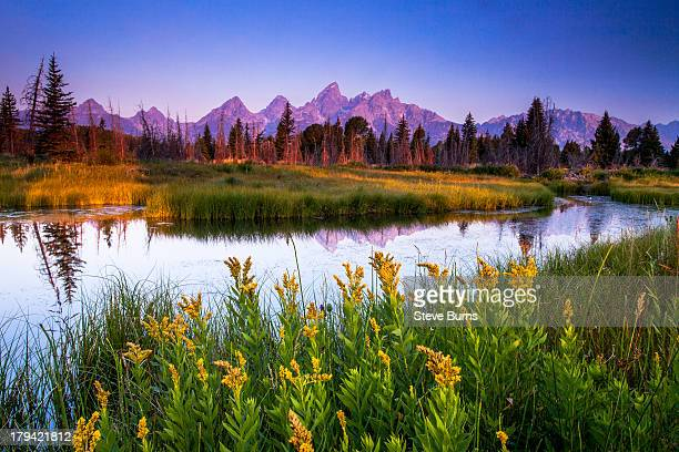 teton sunrise - rocky mountains north america stock pictures, royalty-free photos & images