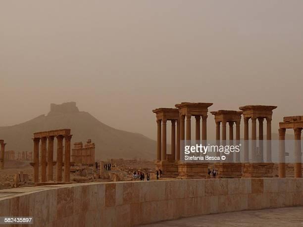 tetrapilo, palmyra (syria) - cité de l'architecture et du patrimoine photos et images de collection