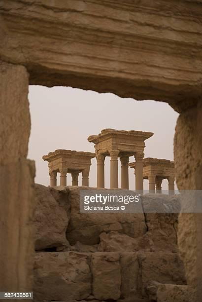 tetrapilo, palmyra - cité de l'architecture et du patrimoine photos et images de collection