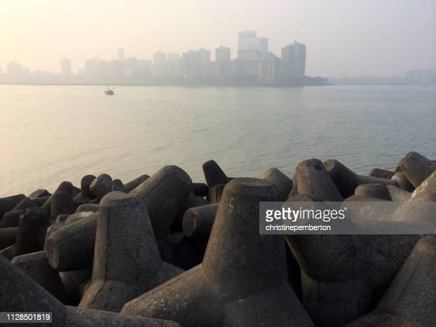 tetrapods on south mumbai shore line, india - 浸食された ストックフォトと画像