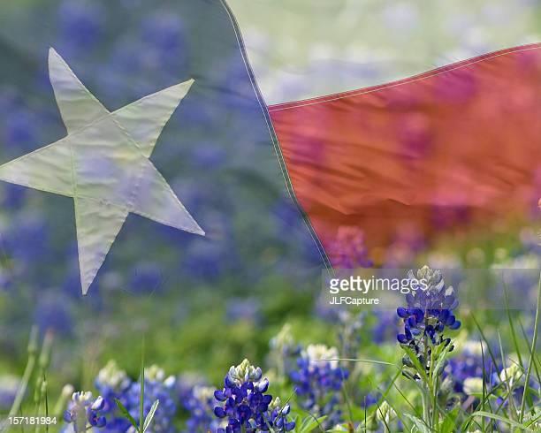 Texas Flag overlaid on Bluebonnets