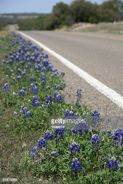 texas highway - texas bluebonnet stock pictures, royalty-free photos & images