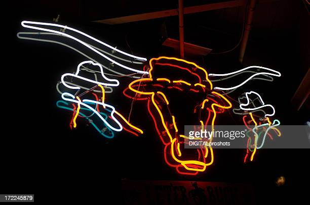 texas longhorn neon sign - texas longhorn cattle stock photos and pictures