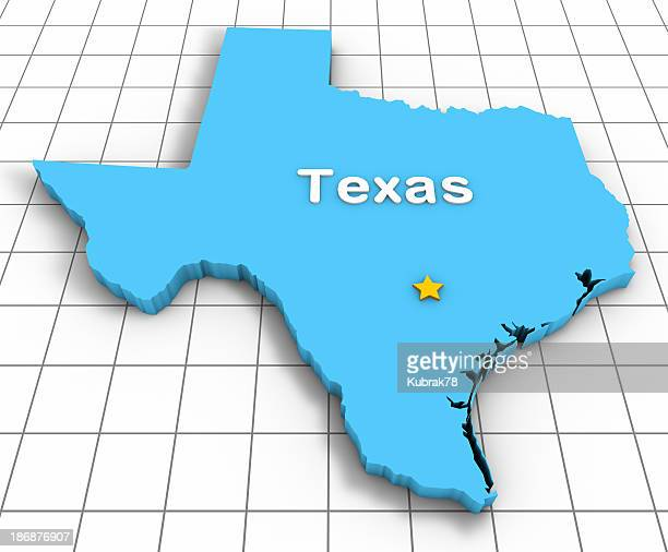 Texas State Map 3D