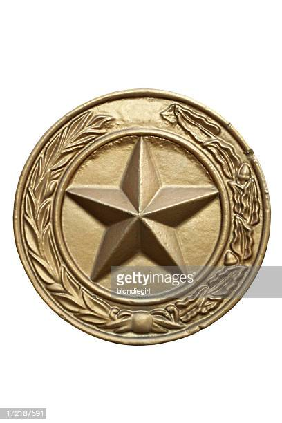 Texas State Seal Isolated with Clipping Path