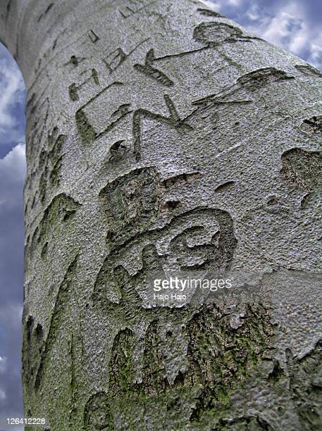 Text carved on tree trunk