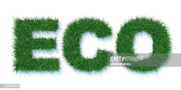 ECO text aus Gras XXXL