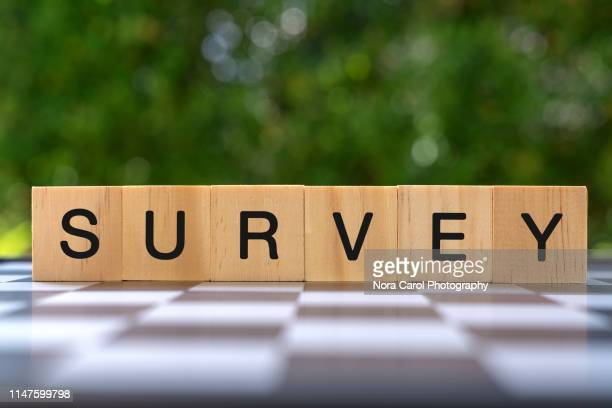 survey text on wood blocks - the_writer's_block stock pictures, royalty-free photos & images