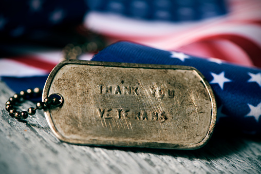 text thank you veterans in a dog tag 869290754