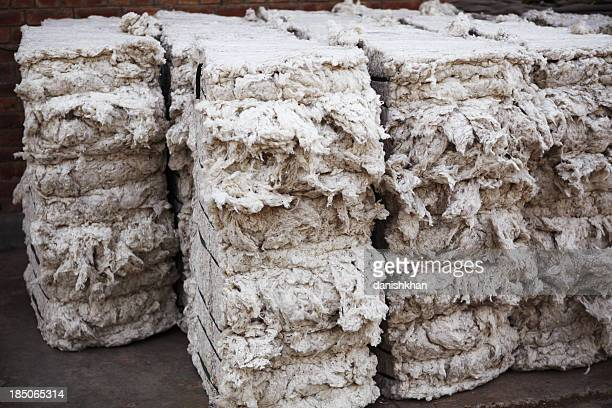 Textile Mill - Organic Cotton Bales