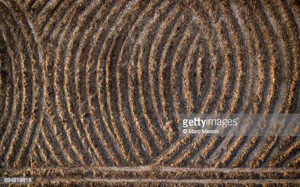 textura de campos labrados - marc mateos fotografías e imágenes de stock