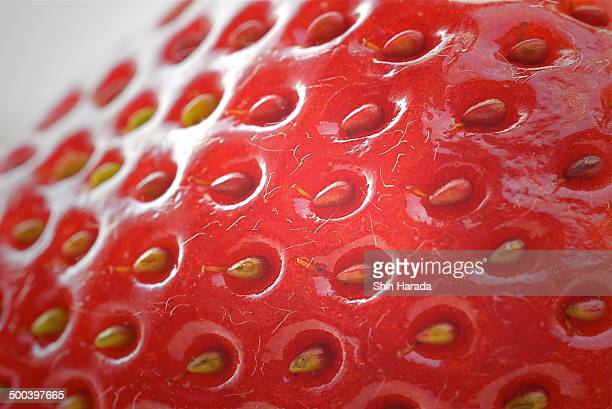Texture of a strawberry