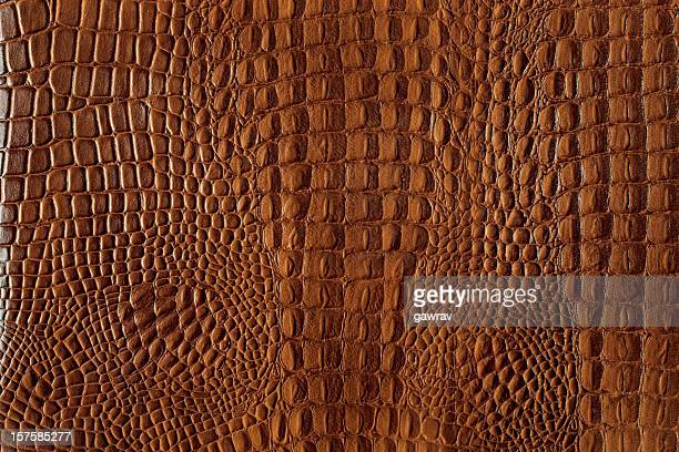 Textured background of genuine leather in crocodile skin pattern