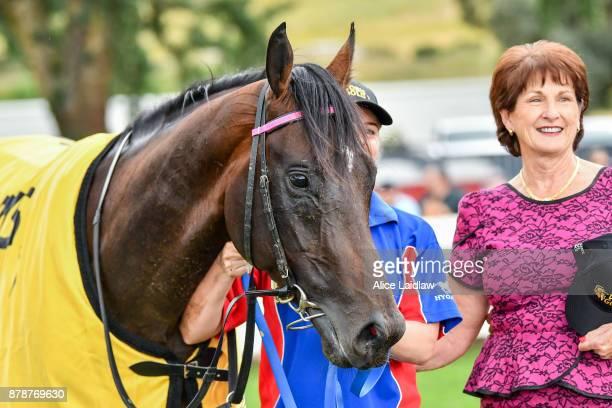 Tezlah after winning the Hertz Ballarat VOBIS Gold Eureka Stockade at SportsbetBallarat Racecourse on November 25 2017 in Ballarat Australia