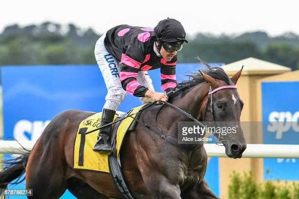 Tezlah ridden by Ryan Maloney wins the Hertz Ballarat VOBIS Gold Eureka Stockade at SportsbetBallarat Racecourse on November 25 2017 in Ballarat...