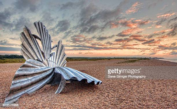 tghe scallop shell at aldeburgh - aldeburgh stock photos and pictures