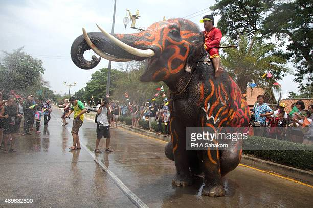 Thai Alephant playing with people on street during Songkran Thailand's New Year festival in Ayutthaya The Songkran Festival runs from 13 to 15 April...