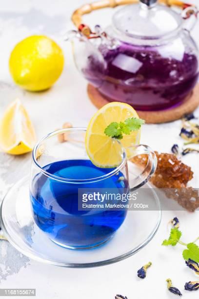 thai blue butterfly pea tea - clitoria bildbanksfoton och bilder