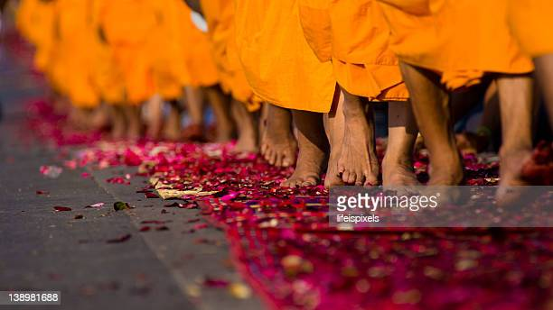 thai buddhist monks' rose paved pilgraimage - lifeispixels stock pictures, royalty-free photos & images