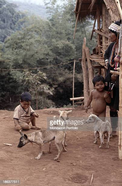 Thai children of the Aka's tribe play in their village with some dogs The Aka's tribe lives in the north of Thailand belonging to the GoldenTriangle...