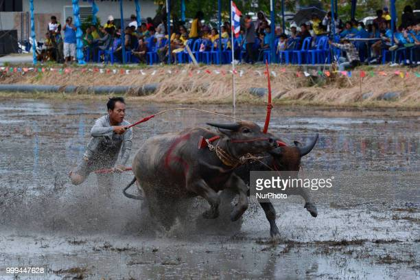 A Thai farmer competes in the Water Buffalo Racing Festival in Chonburi province Thailand July 15 2018