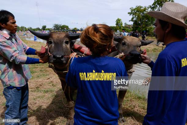 A Thai farmer Competitors and others gather during Water Buffalo Racing Festival in Chonburi province Thailand July 16 2017
