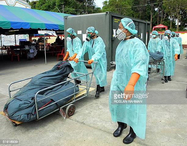 Thai forensic medical helpers bring out corpses from a container freezer at a makeshift morgue in Krabi southern Thailand 06 January 2005 Over 146000...