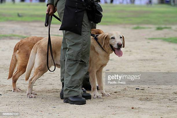 Thai K9 unit patrol for EOD Security at Sanam Luang in Bangkok before Prime Minister Gen. Prayut Chan-o-cha hold a candle lighting ceremony to mark...