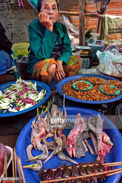 Thai lady selling exotic foods at a street market in Udon Thani Thailand Chopped up baby monitor lizards birds worms frogs and the rest is on offer...
