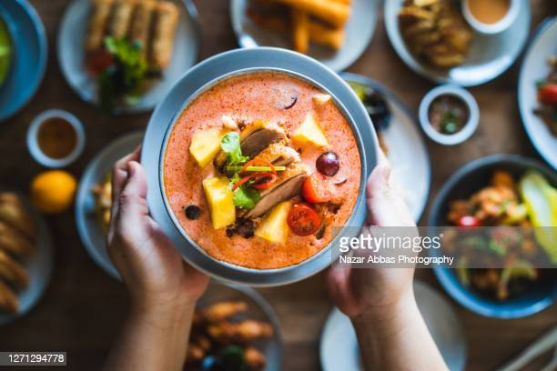 thai red duck curry. - bowl stock pictures, royalty-free photos & images