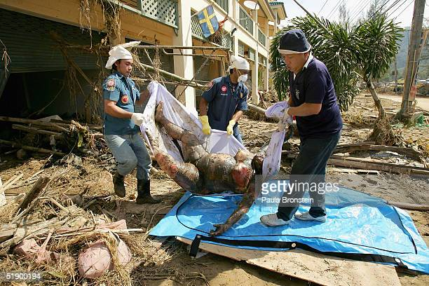 Thai rescue workers carry a woman's body out from a shop on December 29 2004 in Khao Lak Thailand where hundreds of bodies have been recovered today...