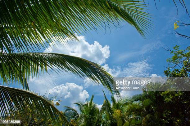 thai sky - lunin stock photos and pictures